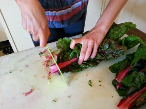 Chopping colorful Swiss chard for the salad.